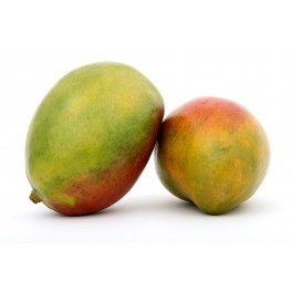 Mangue / 2 pièces