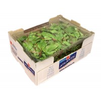 Red Chard / 1kg