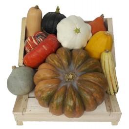 Le Panier de Courges et légumes anciens