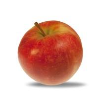 Pomme Elstar colis de 2Kg