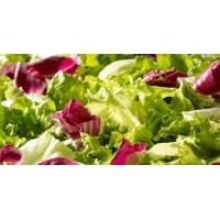 Sachet de salade composée / 500g - madisfrais.com