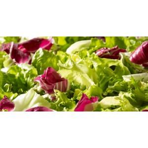 Sachet de salade composée (scarole,frisée,chicorée rouge) / 500g