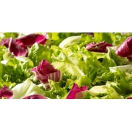 Sachet de salade composée / 500g