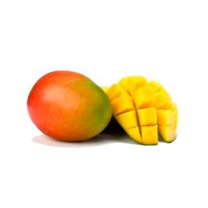 Mangue BIO / Pièce