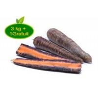 Carotte violette 3kg + 1kg offert