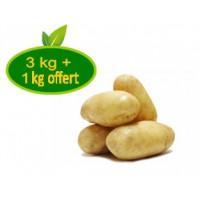 Pomme de terre Charlotte  / 3 kg + 1 offert