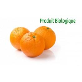 Orange Bio / 10Kg