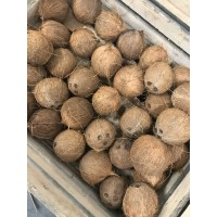 Noix de coco /1 pièce