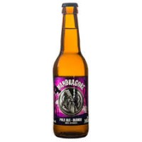 Bières blondes artisanales 33cl x6