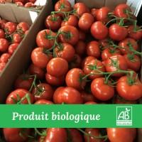 Tomate Grappe Bio - 5 kg