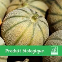 Melon bio - madisfrais.com