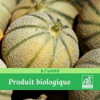 Melon Charentais Bio colis de 12 pièces