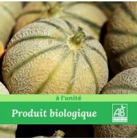 1 x Melon Bio