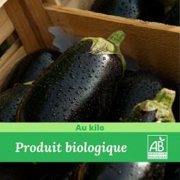 1 kg x Aubergine Bio