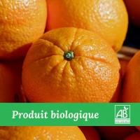 10kg x Orange Bio