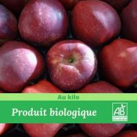 Pomme jonagoreg x 1 kg -madisfrais