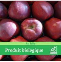 1 kg x Pomme Gala Bio