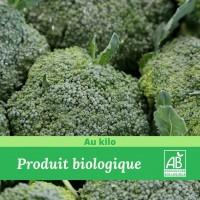 Brocoli bio-madisfrais.com