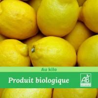 Citron Bio / 1Kg