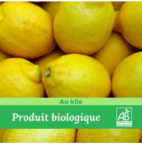 1kg x Citron jaune BIO