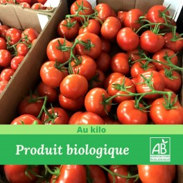 Tomate Grappe Bio / 1Kg