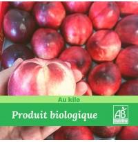 1KG X Nectarine blanche bio