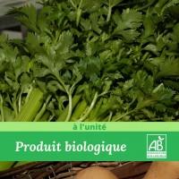 1 X Céleri Branche Bio