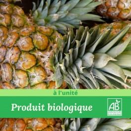 1 x Ananas Bio