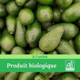 1 pièce x Avocat  Bio