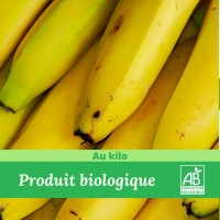 Bananes Bio  / 1Kg