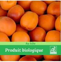 1 kg x Abricots Bio