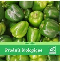 1 kg x Poivron Vert Bio