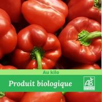 Poivron Rouge Bio colis de 2Kg