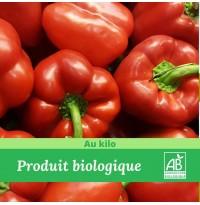 1 kg x Poivron Rouge Bio
