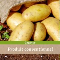 12.5kg de pommes de terre Gourmandine / carton