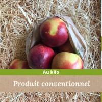 Nectarines Jaune / 1kg