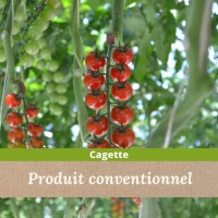 Colis de Tomates Cerises Grappes Rouges / 3 kg