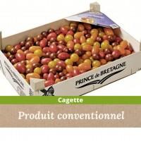 tomate cerise vrac : 3 couleurs / 4 kg