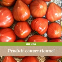 Tomate cœur de Bœuf 8 Kg