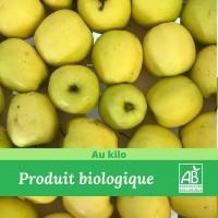 1 kg x Pomme golden BIO