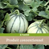 Melon Charentais colis de 2 pièces