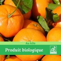 Clémentine-biologique-madisfrais-1kg