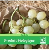 Raisin blanc  italia BIO / 1Kg