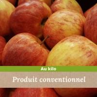 Pomme Gala colis de 1Kg