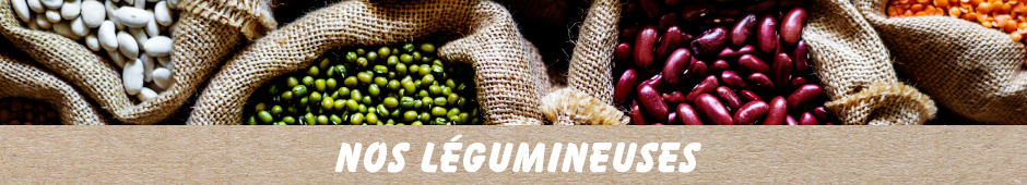Légumes secs / légumineuses